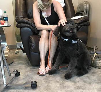 bozeman-pet-therapy